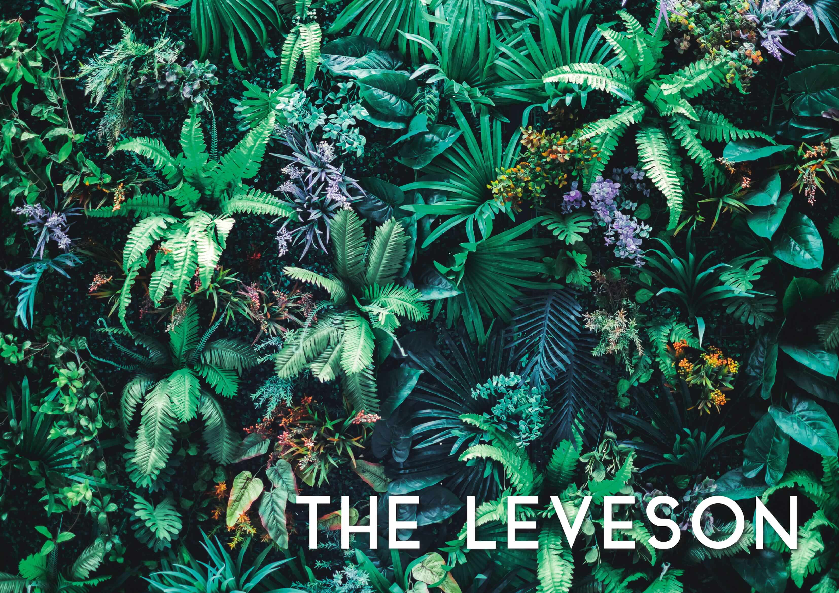 The Leveson Summer Menu Cover